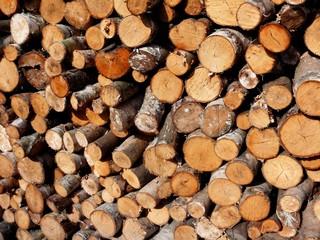 Photo sur Aluminium Texture de bois de chauffage firewood