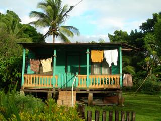native house