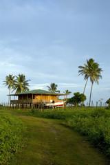 island house nicaragua