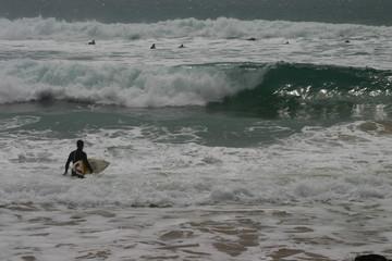 surf surfer