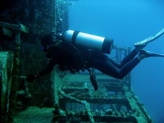 Garden Poster Shipwreck wreck diver