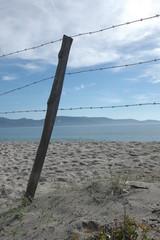 plage propriano nature