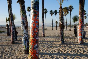 graffiti palm