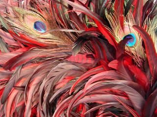 Foto auf Leinwand Fantasie-Landschaft peacock plume