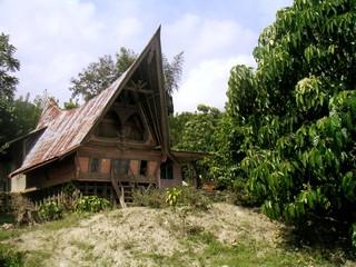 Casas de la etnia Tana Toraja en Sulawesi,Indonesia,Asia