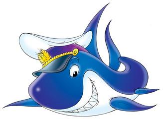 shark captain