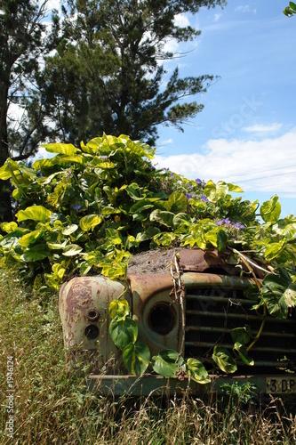 carcasse de voiture sous la vegetation tropicale fotos de archivo e im genes libres de. Black Bedroom Furniture Sets. Home Design Ideas