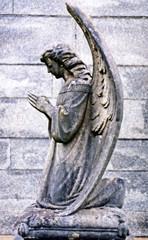 stone angel #1