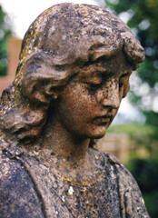 stone angel #4