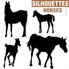 horses silhouettes 1