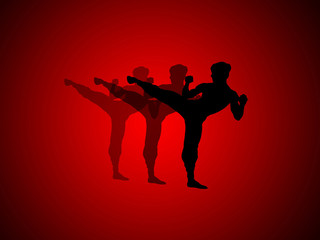 abstract graphic art , kung fu
