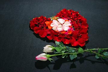 heart rose petals