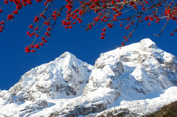 early winter in slovenian alps
