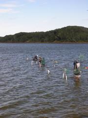 fishermen in line