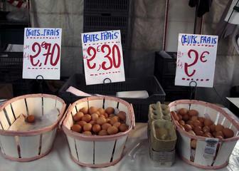 fresh farm eggs french village market