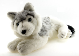 stuffed animal - dog