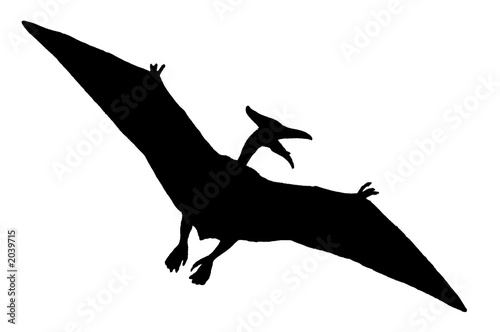 Dinosaure volant photo libre de droits sur la banque d - Dinosaur volant ...