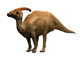 parasaulophus the dinosaur