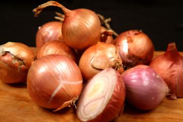 onion - oignon - zwiebel