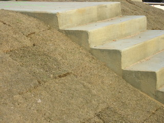concrete steps and sod