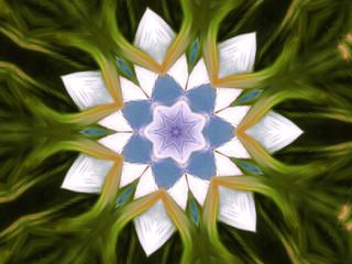 """botanic"" abstract art"