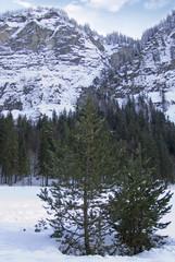 neige010