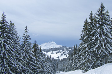 neige061