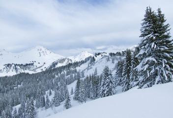 neige085