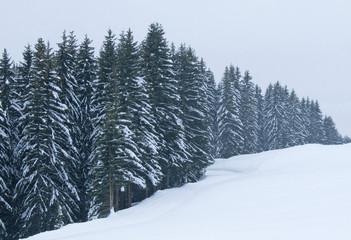 neige093