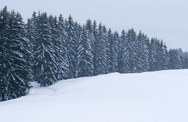 neige094