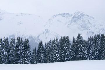 neige095