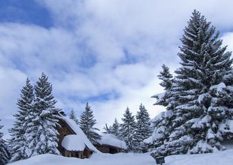 neige099
