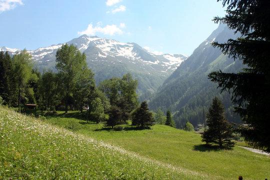 l'été en montagne