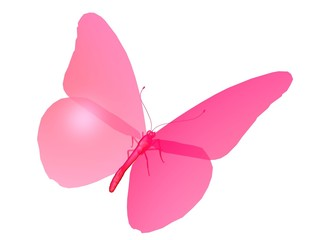 papillon the pink butterfly