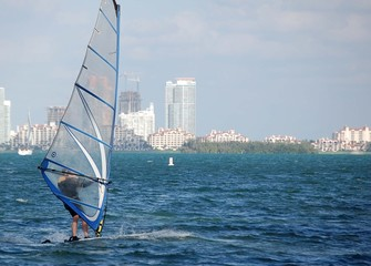 windsurfer on biscayne bay