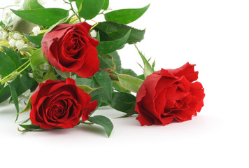 three beautiful maroon roses with decoration
