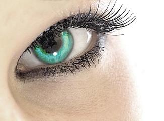 eye, das auge