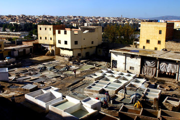 tannerie de meknes-maroc