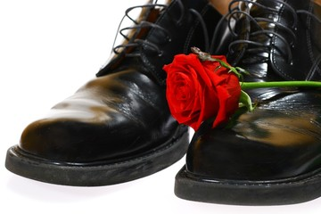 rose and shoes