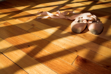 pointe shoes #6