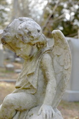 small angel