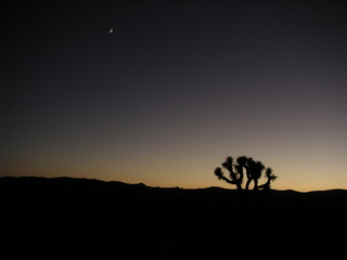 la nuit tombe dans le dsert ameriacin