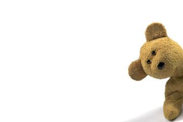teddy peeking