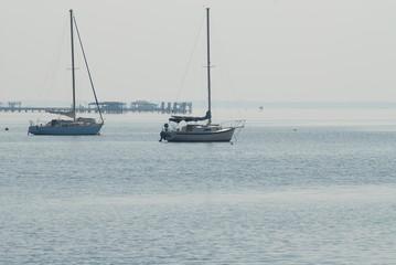 sailboats in sun