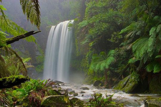 hopetoun falls, otway ranges, australia