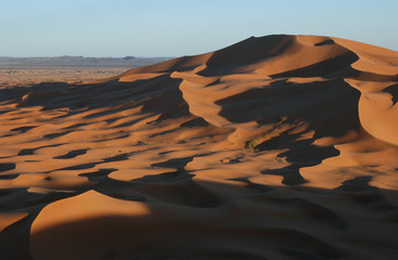 Tuinposter Algerije sahara desert