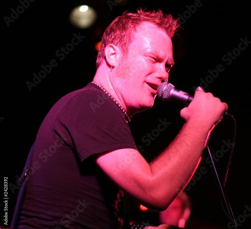 rockstar singing on stage