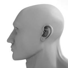 progrades head