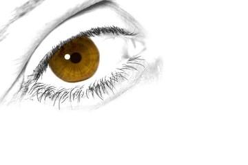 artwork of an brown-yellow eye
