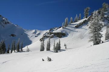 ski resort fresh tracks